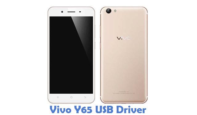 Vivo Y65 USB Driver